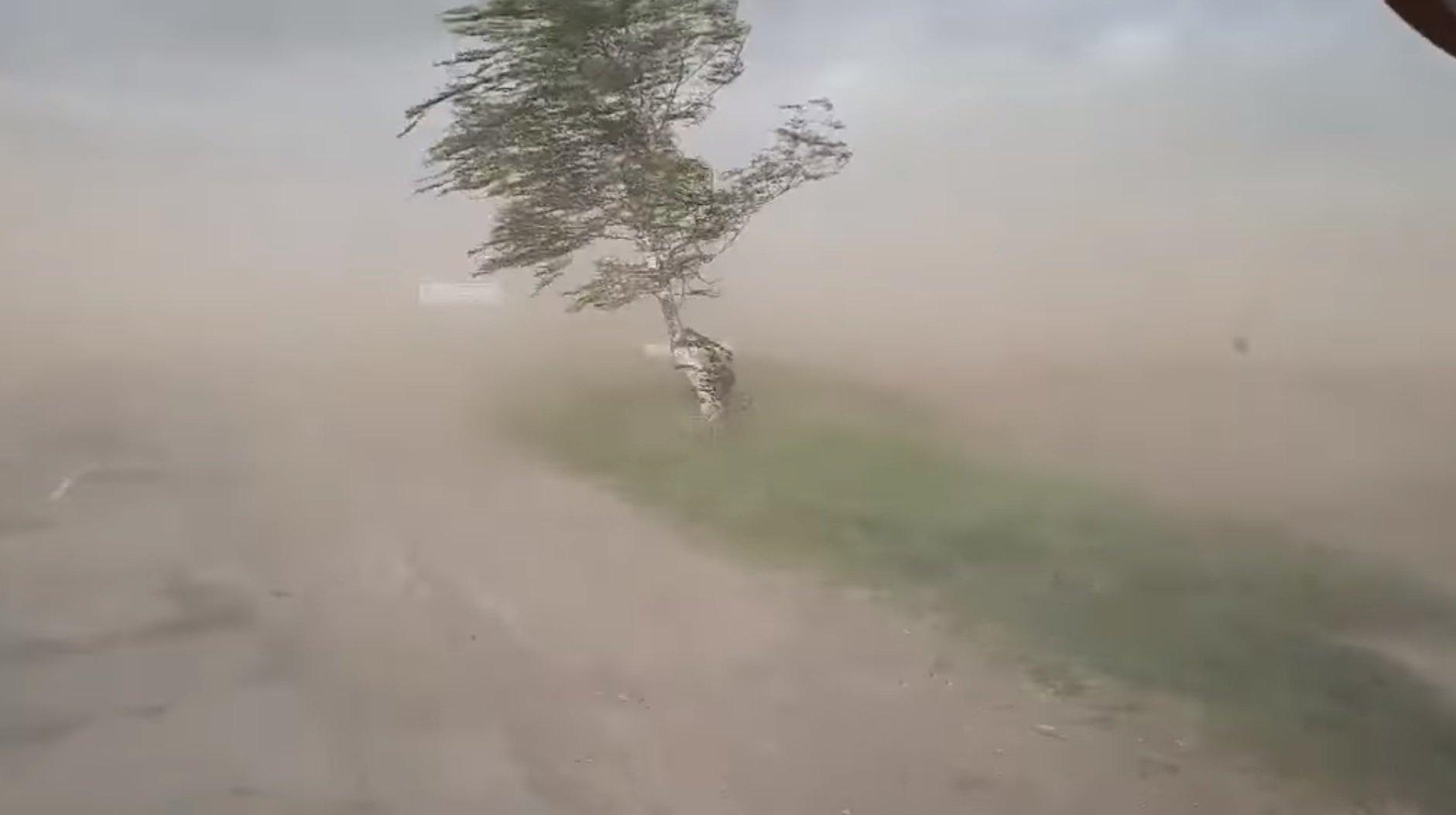 Кривой Рог накрыла пылевая буря: что делать, чтобы не заболеть